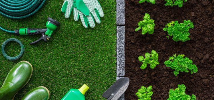המדריך לבחירת מוצרים לגן ולבית